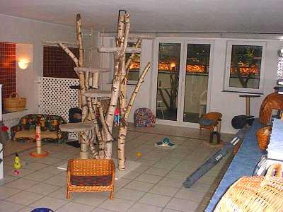 beates tierpension kunstleder und leder reparatur set. Black Bedroom Furniture Sets. Home Design Ideas